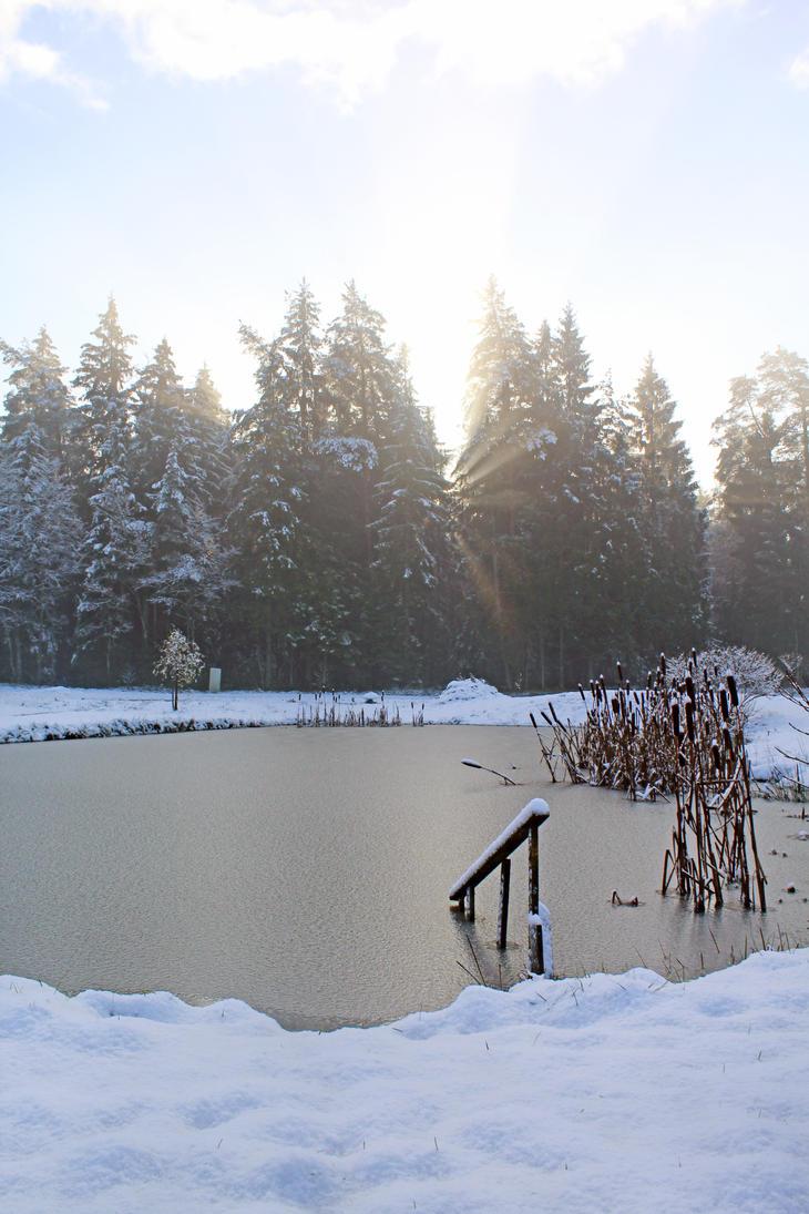 winter day by Astrazzz