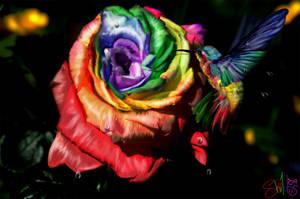 Rainbow Nectar by shilohs