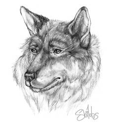 Soul Wolf in Pencil by shilohs