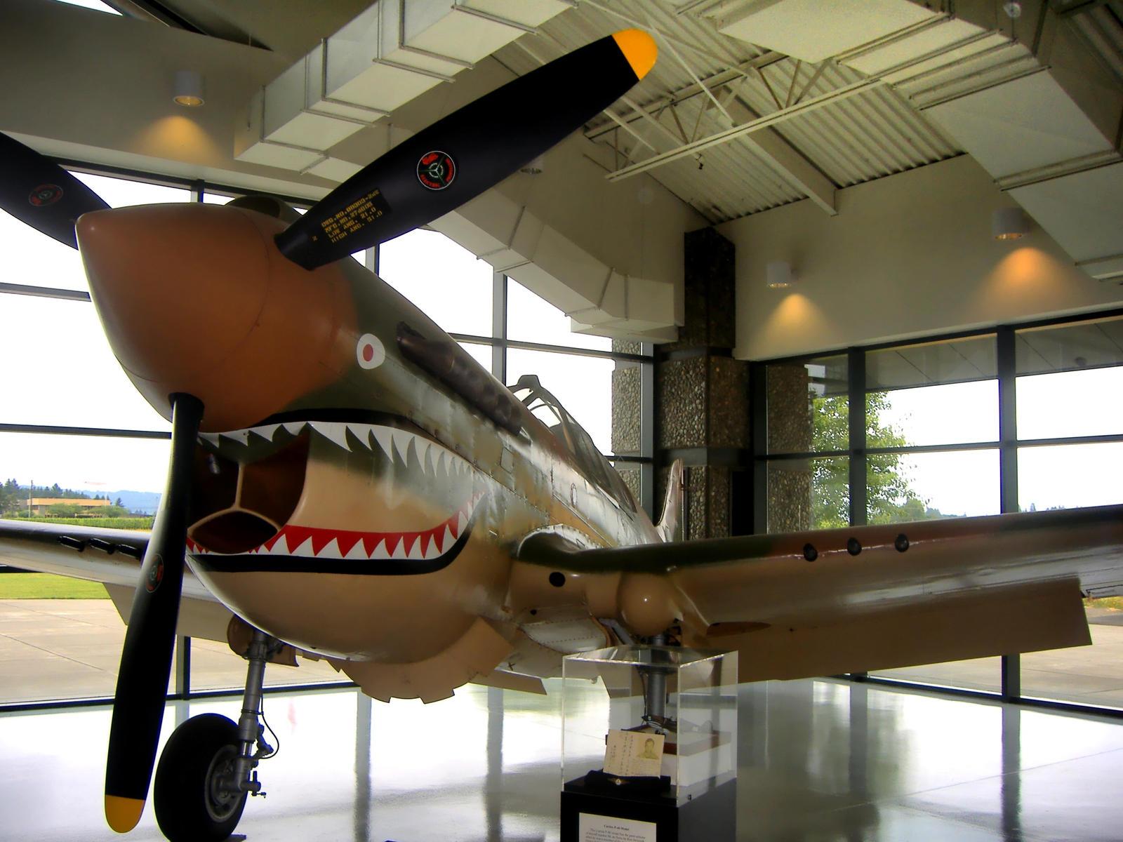 P-40 Warhawk by Sidneys1