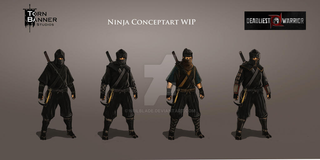 Ninja Concept for Chivlary DW DLC by NeilBlade