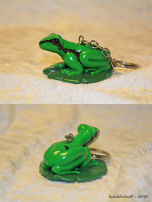 A  little frog (rainette verte) by AnimalisCreations