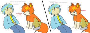 Internet Explorer and Firefox - [Loading...]