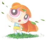 Bloss Ponytail