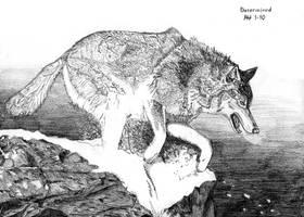 Determind Wolf by DragonWolfACe