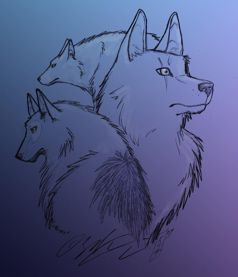 Wolven by Moophles