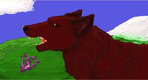 Wolfie on hills