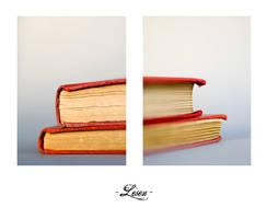 Books III by birgitengelhardt