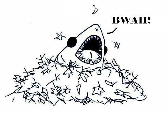 BWAH!!! by BlueRoseVal13