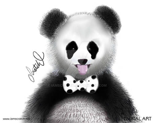 Bowtie Animals - Panda