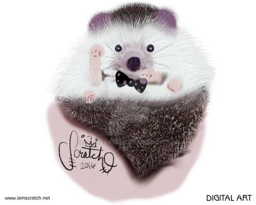 Bowtie Animals: Hedgehog