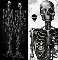 Mechanical Mermaid-bone