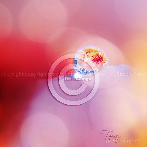 ::TEAR:: by onixa