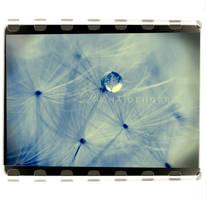 :Framed Memory: by onixa