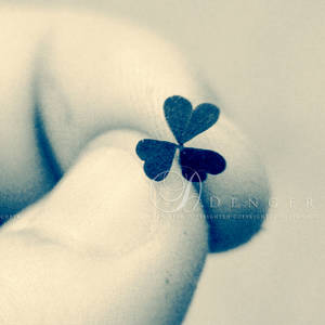 Fragile Memories...