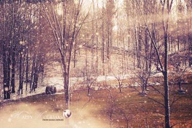 .::Happy Holidays::. by onixa
