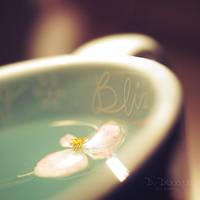 Blissfull Memories by onixa