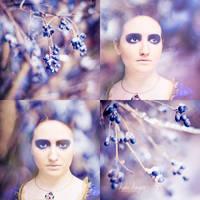 .: Ice Queen :. by onixa