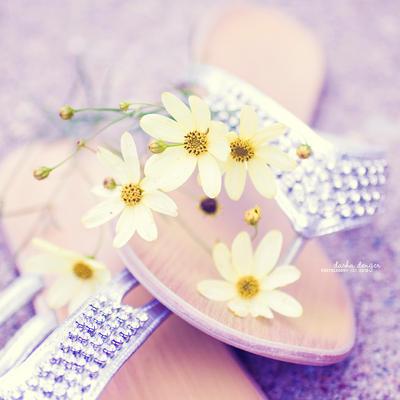 Summer Feet by onixa