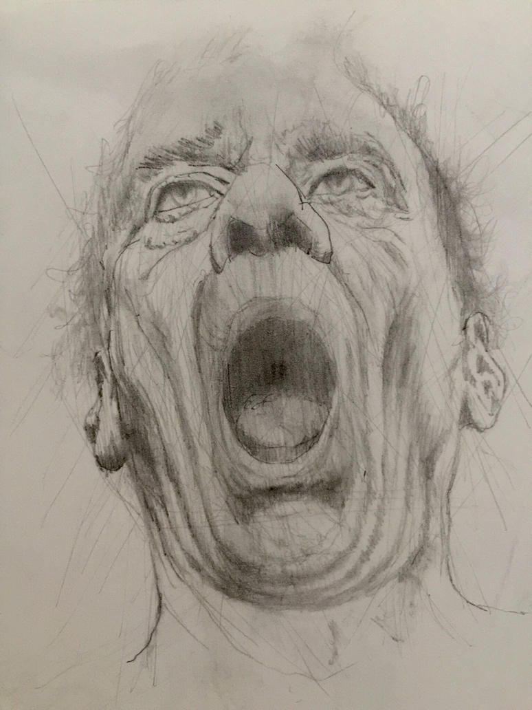 Pencil sketch  by ozwald007