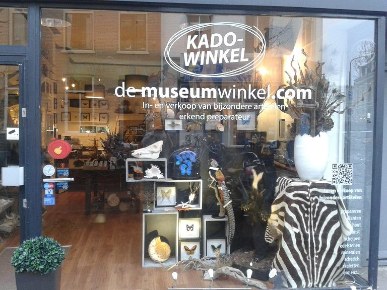 our taxidermy store www.demuseumwinkelmuseumwinkel on deviantart