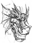 Dragon Face Sketch