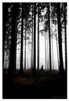 Lonely Journey by TobiasRoetsch