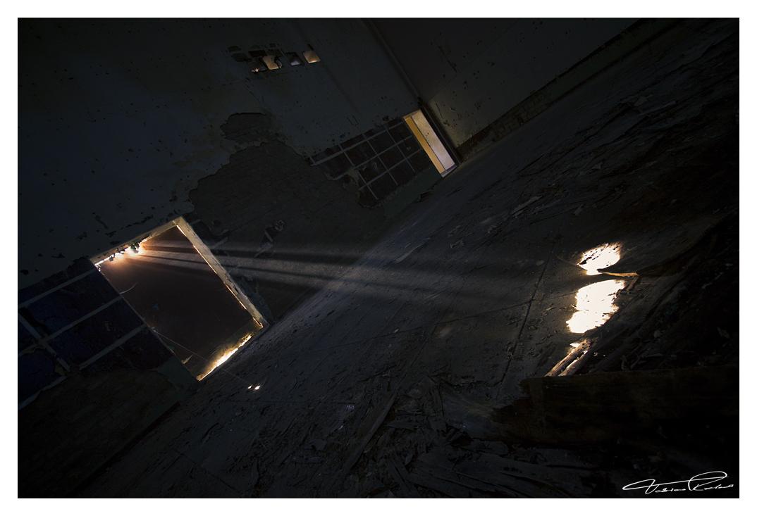 Light by taenaron