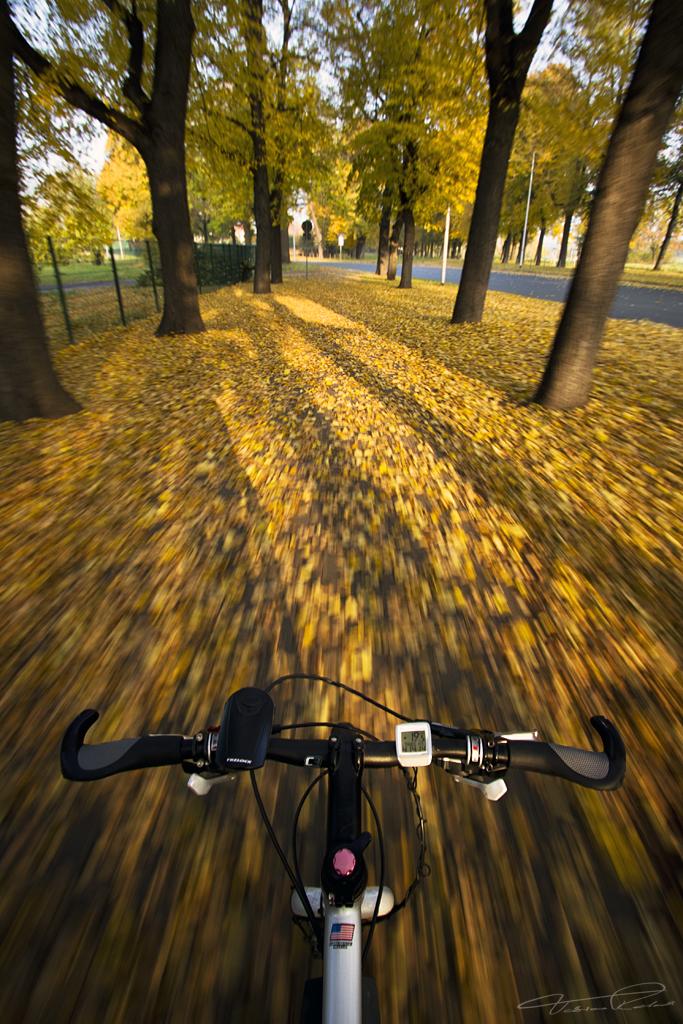 I go by Bike