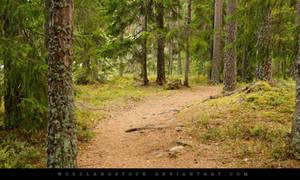 00056 by woodlandSTOCK