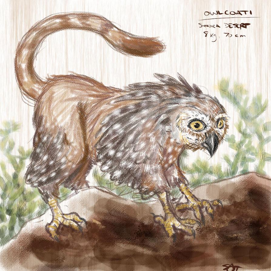 Kuhi, or owlcoati by racerxmachina