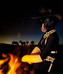 Prairie night by WildyTheDonkey