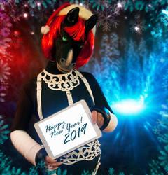 Happy New Year! by WildyTheDonkey