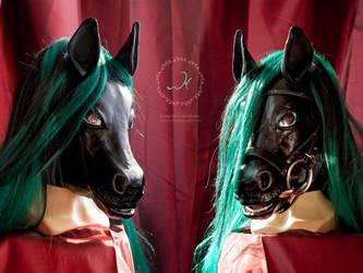 Corbie the Kelpie - horse mask by WildyTheDonkey