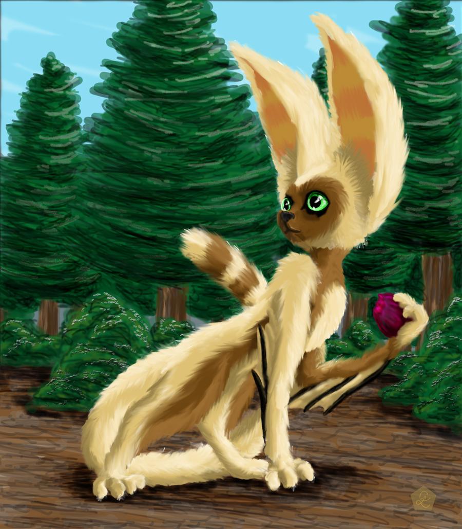 Flying lemur avatar - photo#48