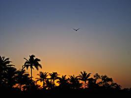 puesta del sol - Varadero