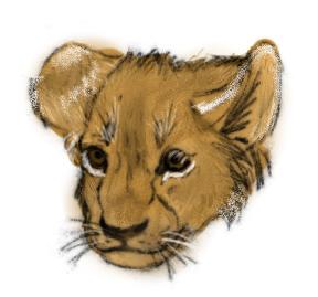 Lion cub head by AlbinoRichie