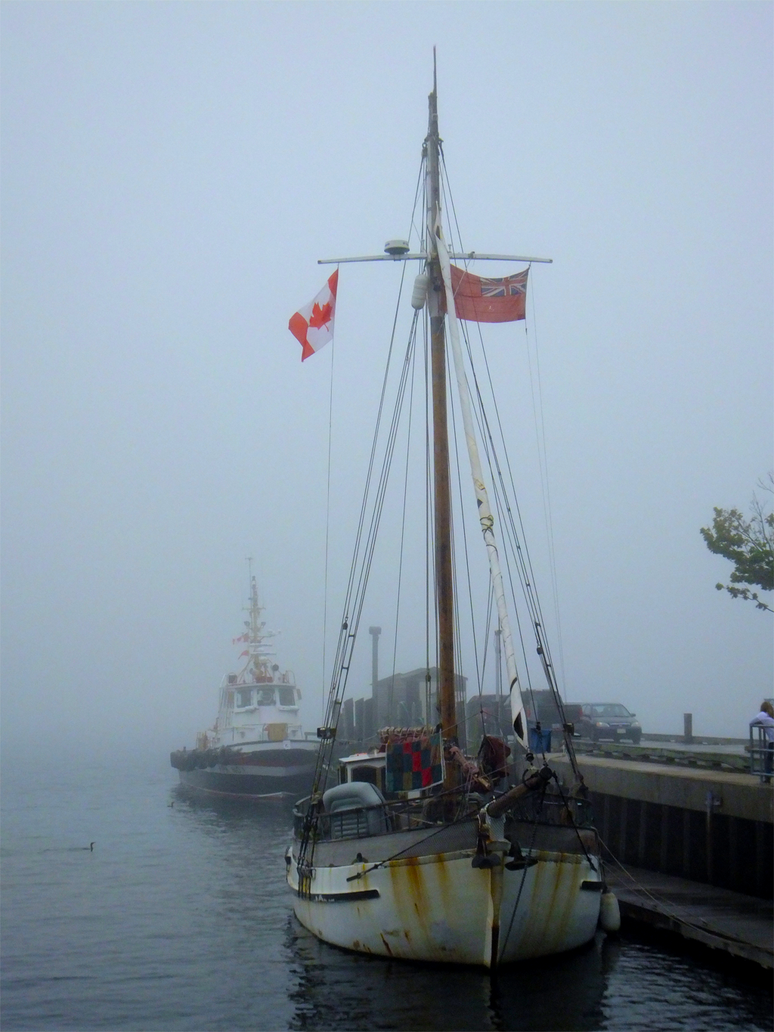 Halifax Harbour Fog by kybrdgal