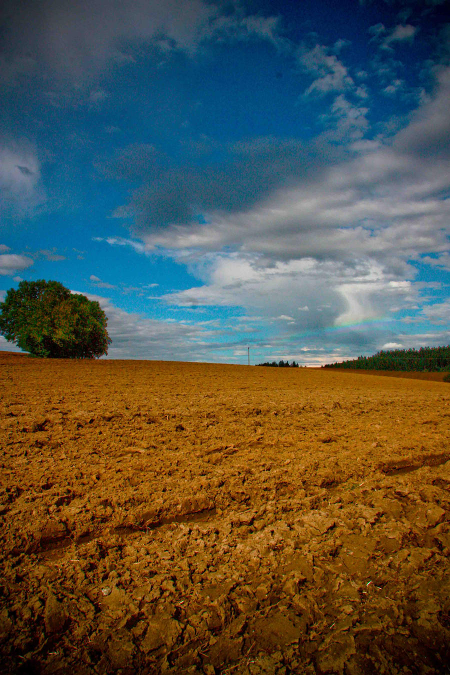 Simple Landscape By LittleMYv