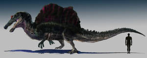 Spinosaurus aegyptiacus (non-feathered) by DanneArt