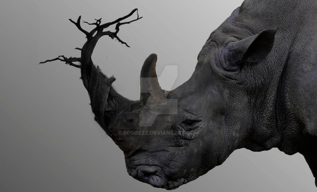 Rhino Treehorn by Borgezz