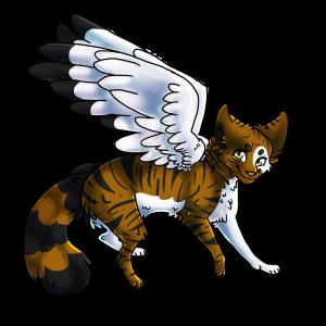 meridae's Profile Picture