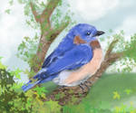 Bluebird of Yippee by bumblefly