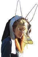 Decorative Anubis Mask