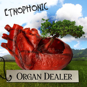 Organ Dealer