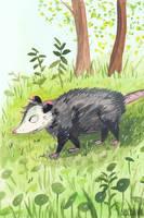 Gouache Opossum by SpycyHorror
