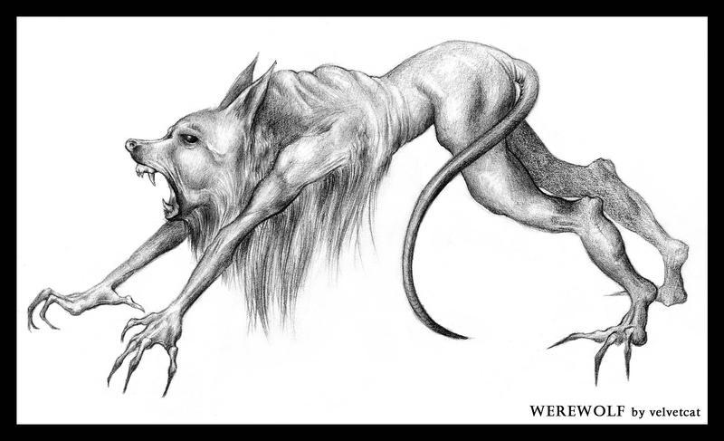 Werewolf by velvetcat
