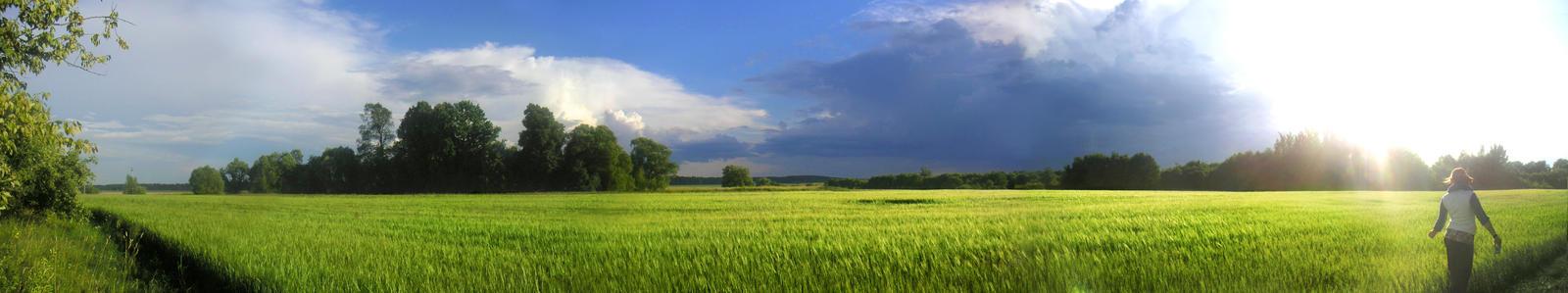 Panoramic view? by velvetcat