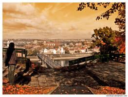 The colours of autumn by Vindrea