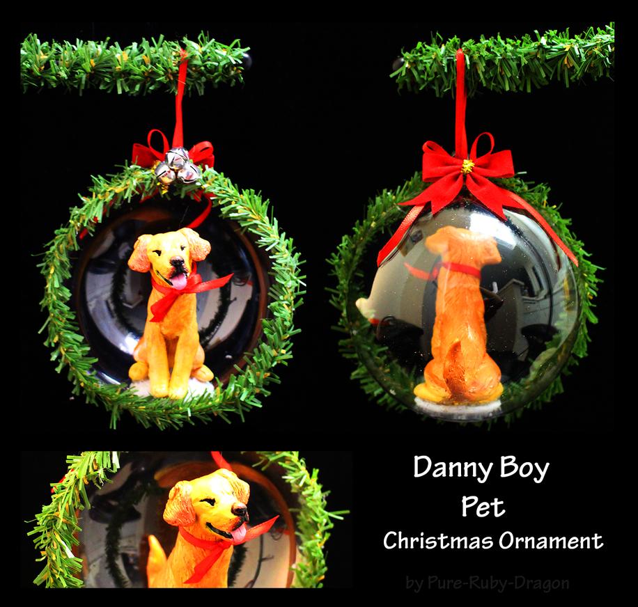 danny Boy by PureRubyDragon